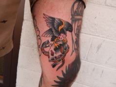Bird, Snake, and Skull Tattoo
